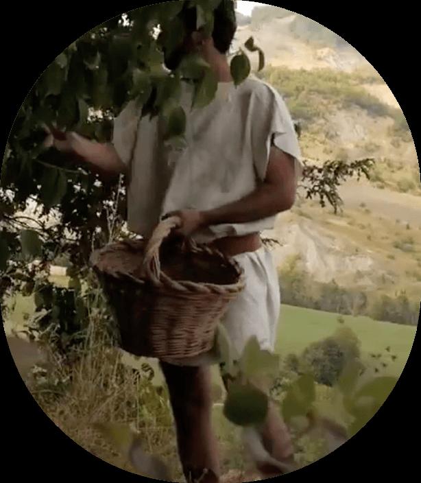 Episodio 3- Il lavoro nei campi - L'alba degli etruschi